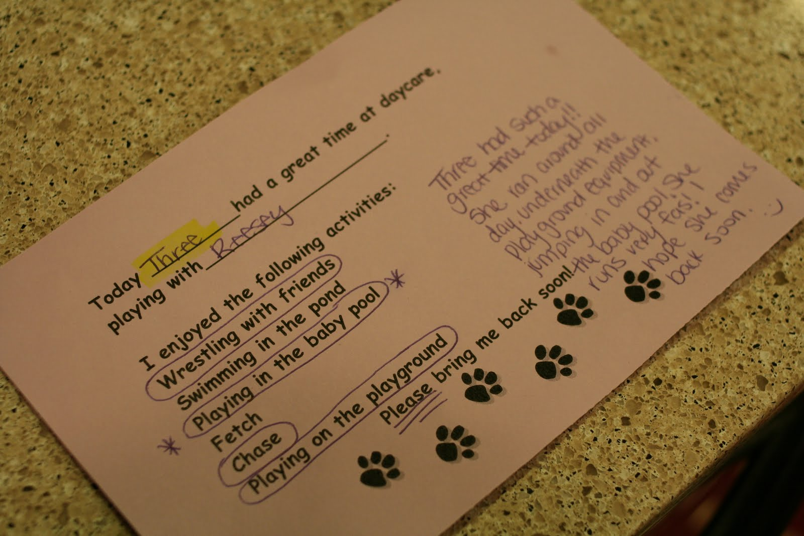 Dog Daycare Report Card Template Infocards Co Kelleytime 5 Star Dining Experience