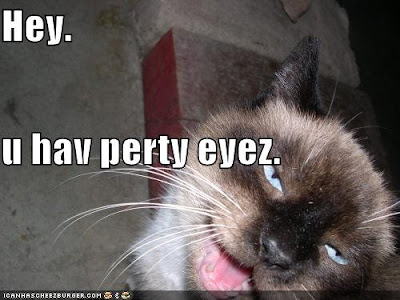 [NEW] +++SSF+++ Project p.5  シシ*^▽^*)ノシ - Page 2 Funny-pictures-creepy-lolcat-hits-on-you