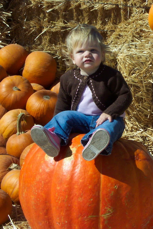 Raine waiting for her pumpkin