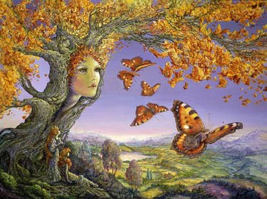 Risultati immagini per immagini fantastiche di farfalle