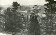 view of the brewery through the trees