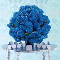 AZUL+1 Tudo azul...!