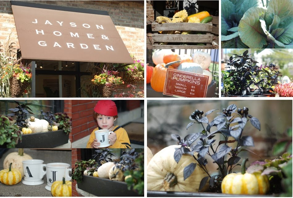 Feeling Fall- New Window Boxes from Jayson Home and Garden