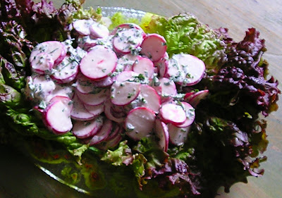 German Radish Salad with Sour Cream Dressing