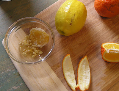 Making Marmalade - collecting the seeds
