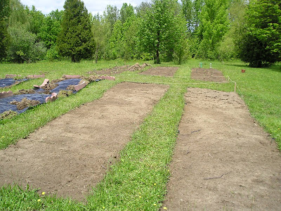 Beds in the Vegetable Garden