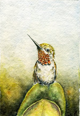 watercolor hummingbird painting