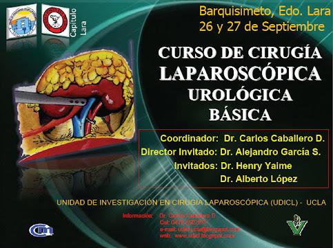 CURSO DE CIRUGÍA LAPAROSCÓPICA UROLÓGICA BÁSICA