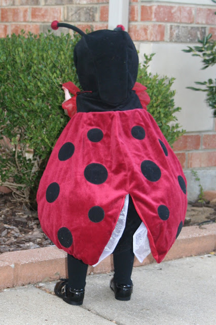 ladybug costume & Trick or Treat with Homemade Costumes - Dukes and Duchesses
