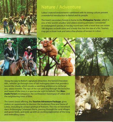 Travel Central Philippines: Brochure - Loboc River Cruise ...