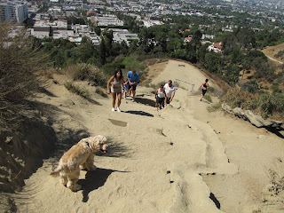 Runyon Canyon dog park