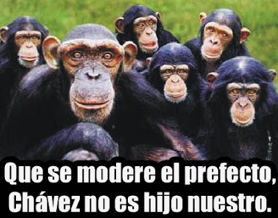 VENEZOLANOSSSS..... Macacos%5B1%5D+copia