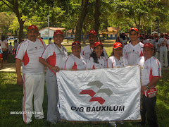 Bauxilum