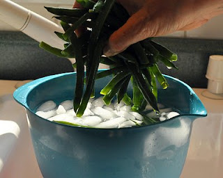 Lift the beans out of the ice water