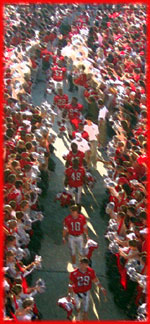 The Dawg Walk