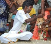 indian married a dog- ap photo