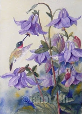 Purple Columbine and Hummingbird watercolor