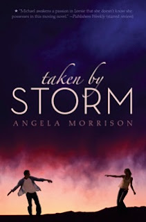 Taken by Storm (Angela Morrison)