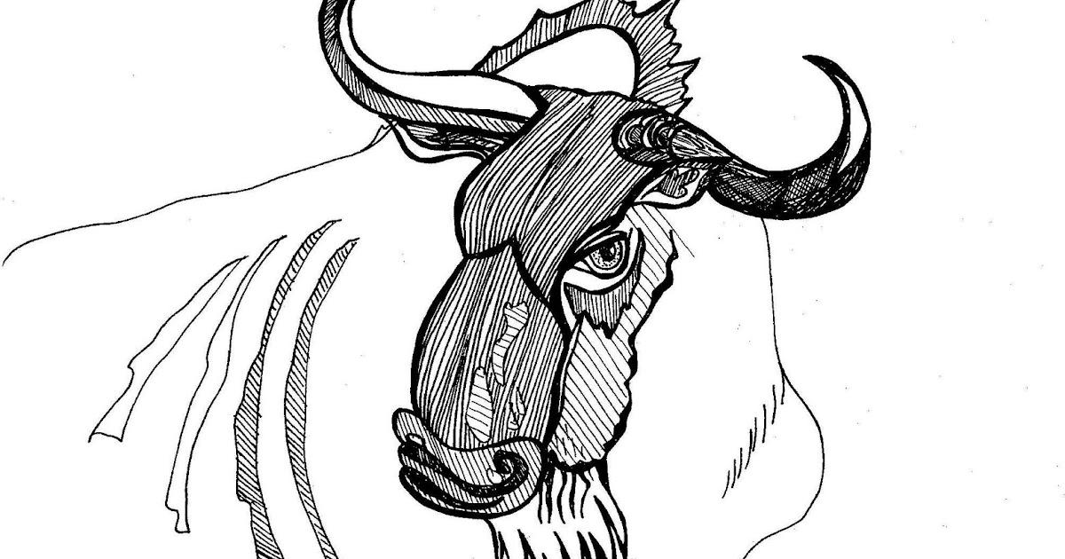 Daily Draw: Wildebeest
