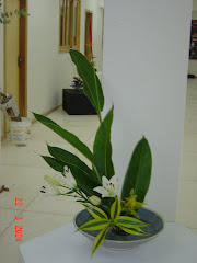 IKEBANA - IT´S AMAZING!