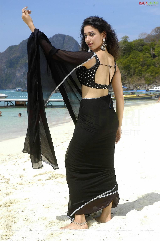 tamanna hot sexy saree