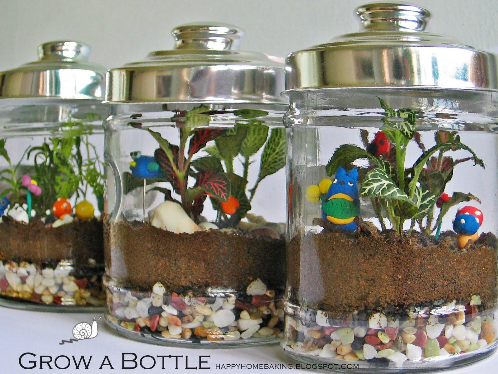 Happy home baking grow a bottle for Bottle garden ideas