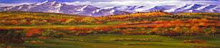 Davis Galleries Original Landscape Fine Art