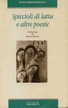 """""""Spiccioli di Latta"""", 2004, edizioni Guerra"""