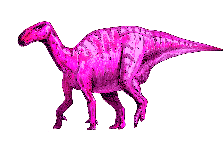 ART Evolved Lifes Time Capsule Pink Dinosaur 133