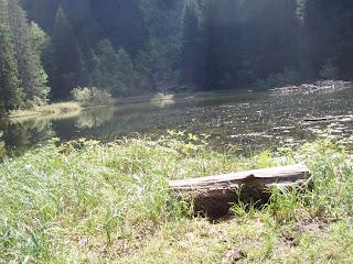 Chablais - Lac de Pététoz