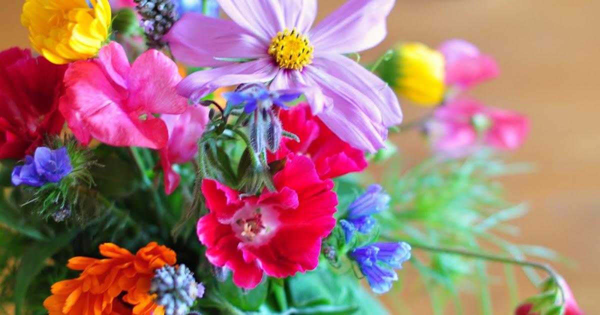 Good Bunches Flower Evening