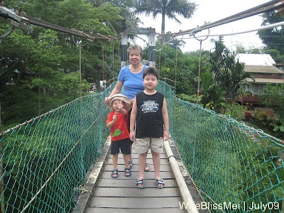 william, henry and grandma on the suspended bridge