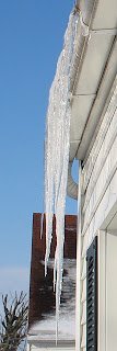 one of these icicles is more than three feet long