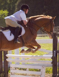 Novice Show Jumping, Penrose Farm 2008