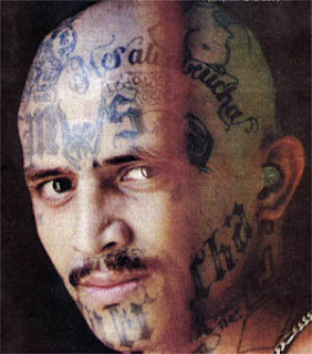 ms 13 tattoo street gang tattoo images
