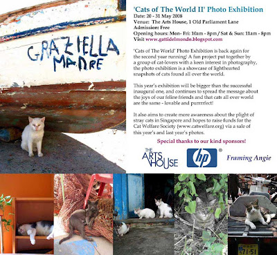 Cats of The World II: Photo Exhibition