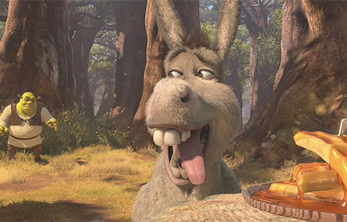 Cute Donkey Wallpaper Envisager L Avenir Look Into The Future Just Watched