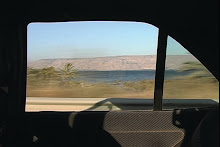 Pasolini pa* Palestine