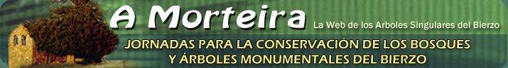 A MORTEIRA, Jornadas para la Conservación de los Bosques y Arboles Monumentales del Bierzo