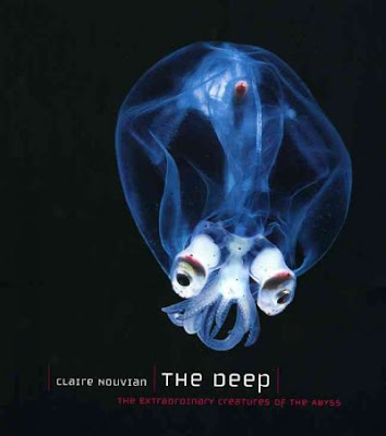 Book Jacket, The Deep