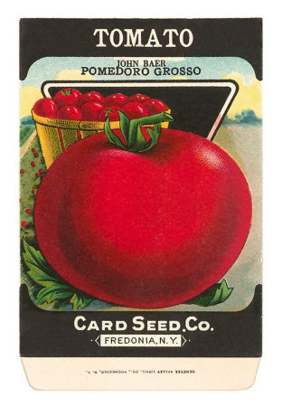 Tomato+Seed+Packet.jpg