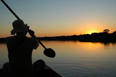 Vagamundo - Pantanal