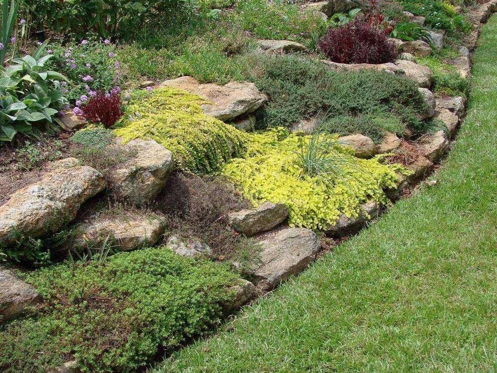 un colorato angolo di giardino immagini e sfondi per