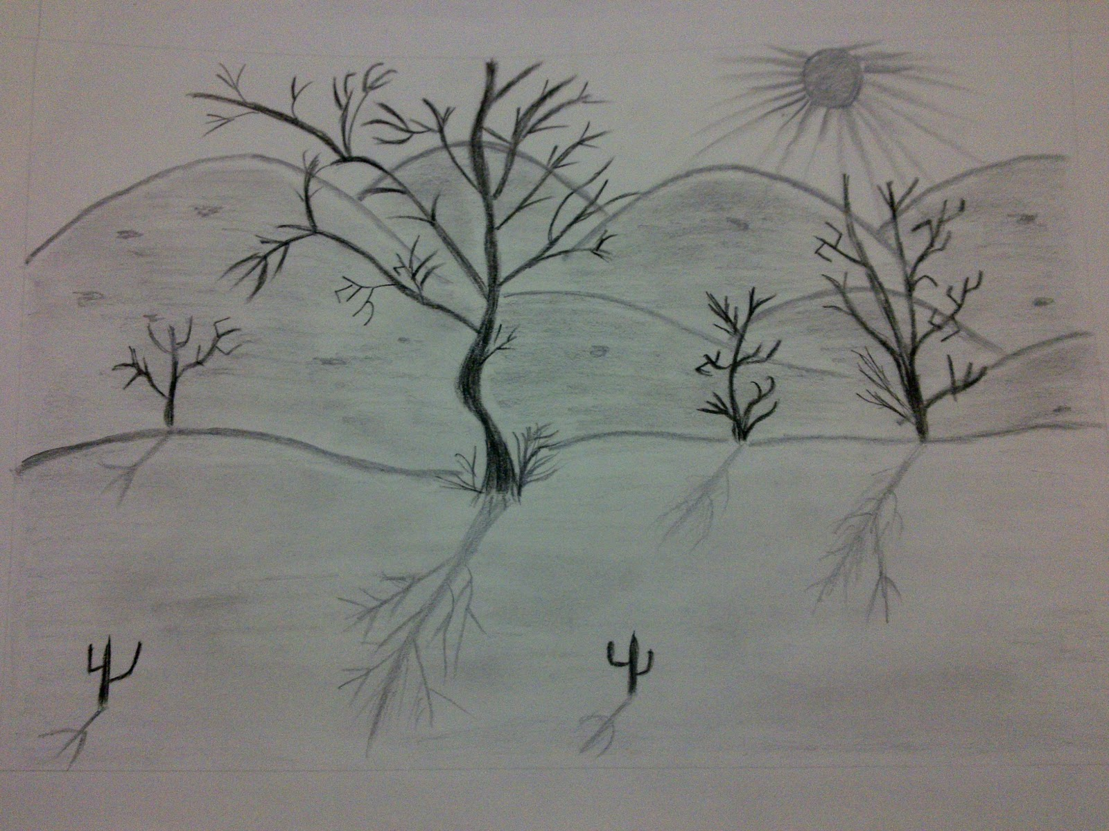 Beginning the Journey of Drawing.: My drawing - Natural Scene