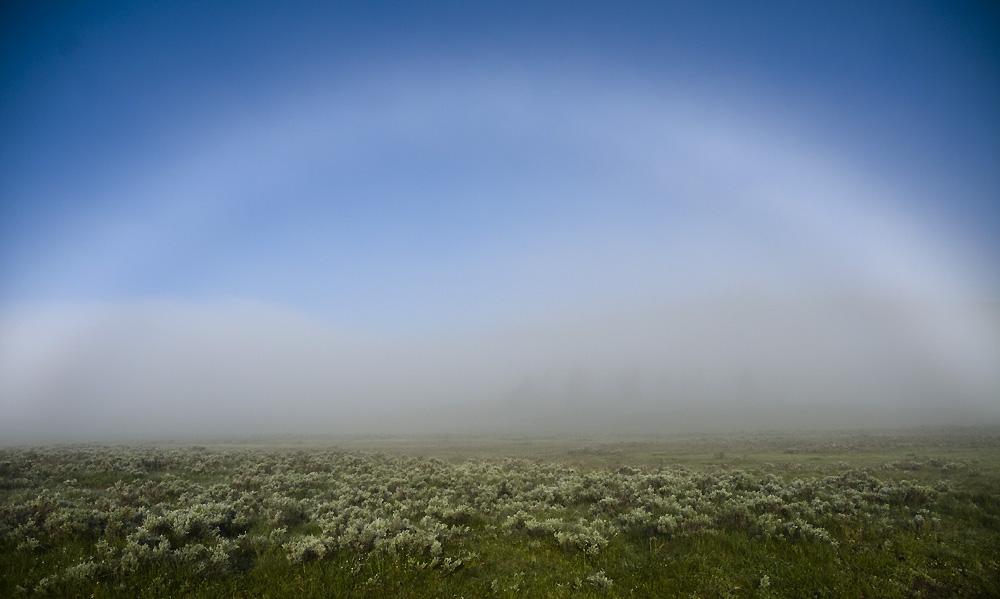 Wyoming Photos: Fogbow (aka white rainbow)