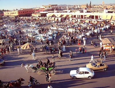 Marrakech311