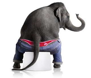dicen que el elefante es gordo: