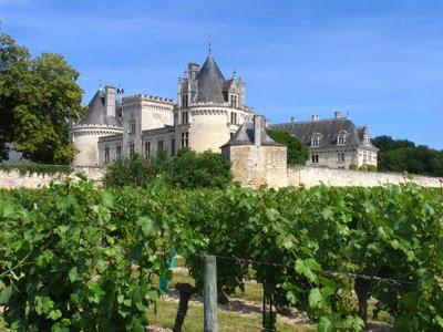 The vineyards and Château de Brézé e5e2fe8e20e3