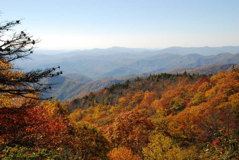 [Mts.Fall]