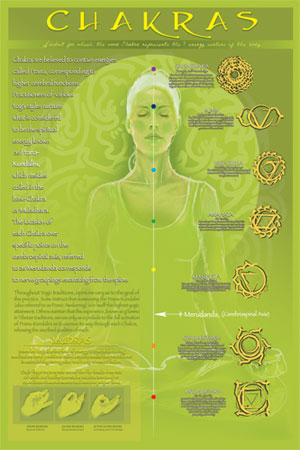[2450-1017~Chakras-and-Mudras-Posters.jpg]